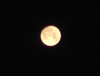 1870142968-full_celica_night_fullmoon4.jpg